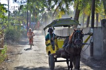 ...Or hire a bike where you can and have races (I was winning) - Gili T, Indonesia